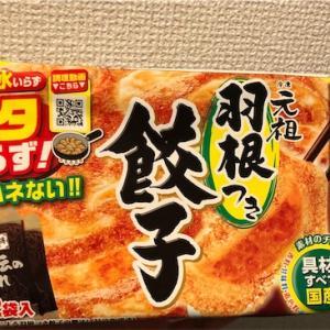 大阪王将の餃子を焼いてみた!