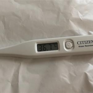 体温計を買いました