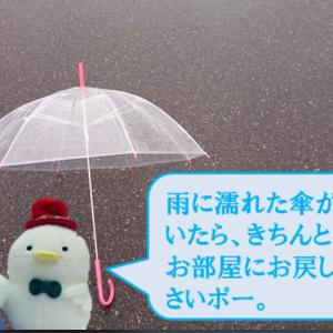 お外に出しっぱなしの傘が大事故に