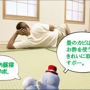畳のカビ取りにはお酢がオススメ  須賀川市六郎兵衛