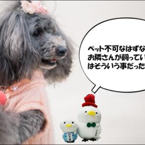 募集条件としてはペット飼育不可  分譲賃貸マンション 須賀川市上北町