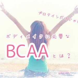 【ボディメイクダイエット】プロテインだけじゃ足りない!BCAAで筋肉の分解防止を