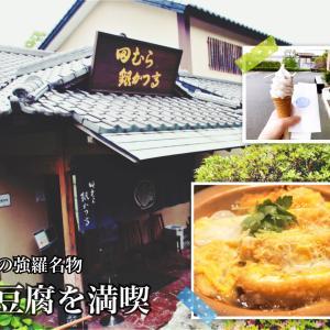 【箱根旅行】強羅名物の銀豆腐を満喫!田むら銀かつ亭と銀豆腐の豆乳ソフトクリーム