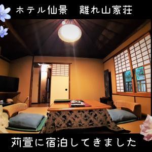 【箱根湯本】ホテル仙景の離れ山家荘~苅萱~の部屋に泊まりました!【女ひとり旅】