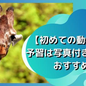 【初めての動物園】予習は写真付き図鑑がおすすめ
