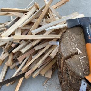 小春日和の「焚きつけ」作りと間伐材