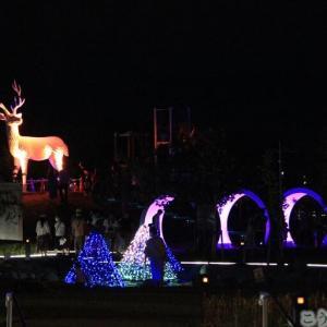 ゆりの里公園 鹿と水路トンネルの新しいイルミネーション 十郷用水鳴鹿伝説