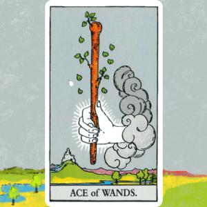 ワンドのエース1(Ace of Wands)