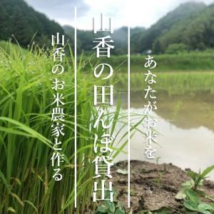 荒れた田んぼの再生計画【山香の田んぼ貸出】