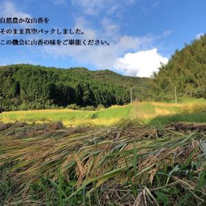 山香のお米農家さんが作った山香の新米【お試しパック】できました。