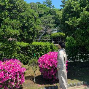【春の装い着物】ピンク色に抽象的なお花柄の小紋でショールは手持ち!ツツジ祭り