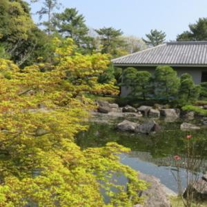 『葉山しおさい公園』昭和天皇即位の地で日本庭園を楽しもう!