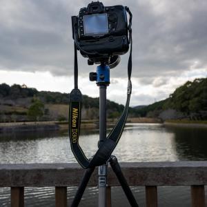 シグマ150-600mm+D300