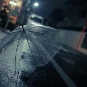 """""""あえて""""雨を感じる秋の東京と立川のカフェ"""