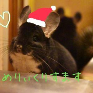 Merry X'mas✨