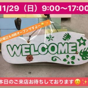 11/29(日)9:00〜17:00