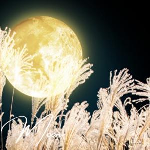 月を眺めて秋の夜長をしっとりと