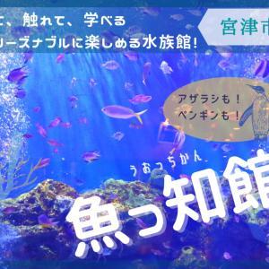 【魚っ知館-うおっちかん-】《宮津市》ペンギンやアザラシにも会える!子連れファミリーにおすすめのローカル水族館!
