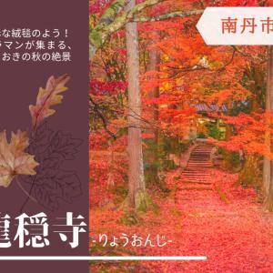 【龍穏寺-りょうおんじ-】《南丹市》11月中旬から下旬が見頃!まるで真っ赤なレッドカーペット🍁敷紅葉にカメラマンが集まる、園部の絶景スポット!