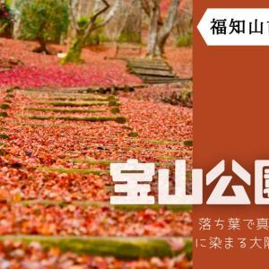 【宝山公園】《福知山市》11月中旬に広い範囲で真っ赤な紅葉と雲海が見られるスポット。一面に広がる散り紅葉が見事!