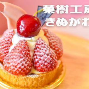 【菓樹工房きぬがわ】福知山駅前のケーキ屋さん!旬のフルーツで福知山の四季を感じる✴︎