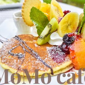 【MoMo cafe-モモカフェ-】植物いっぱいのガーデンが可愛いカフェ!犬連れもOK《福知山市》