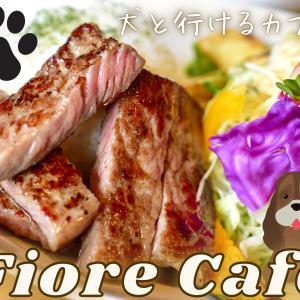 【Fiore Cafe】室内もワンコ連れOK!天然芝のドッグランがあるカフェ《綾部市》