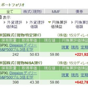 【SPXL積立投資】終値53.80ドル 647口保有 つい買ってしまいました