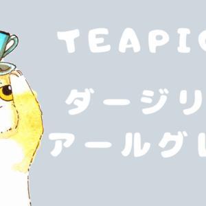 【お茶レビュー】ティーピッグス・ダージリンアールグレイ
