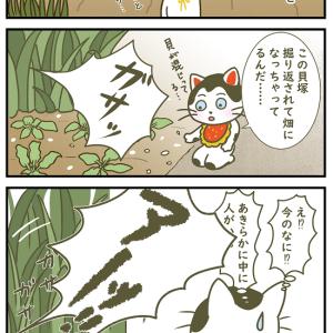 【4コマ漫画】貝塚を見に行って寿命を縮める