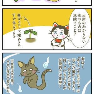 【4コマ漫画】いわくつき? 勝手に生えてくる作物