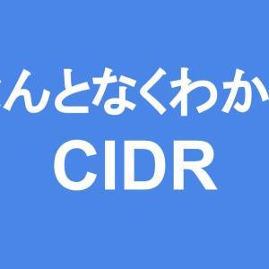 なんとなくわかる「CIDR」