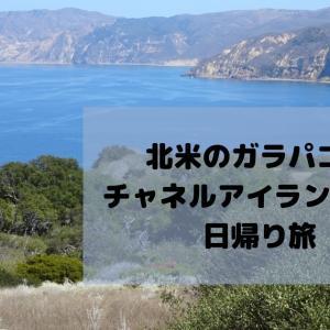 LAから一番近い国立公園Channel Islands National Parkへ行ってみた!~Part1~