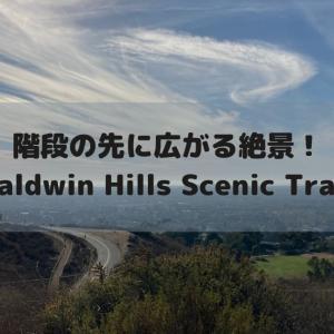 階段の先に広がる絶景!LAを一望できるBaldwin Hills Scenic Trail
