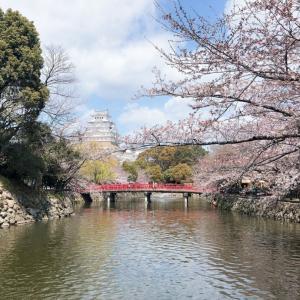 姫路城の思い出