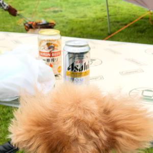 愛犬とキャンプ♪