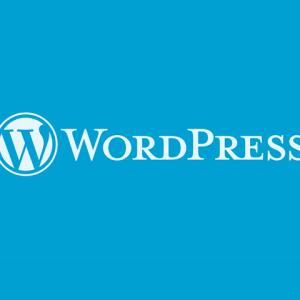 2020年版WordPressを便利にする入れておきたいプラグイン10個