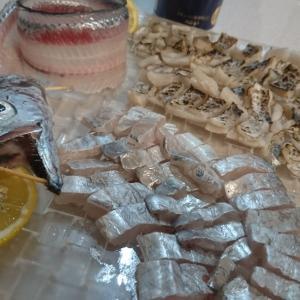 釣り人の特権!新鮮な内に食らうぅ~(^○^)タチウオ