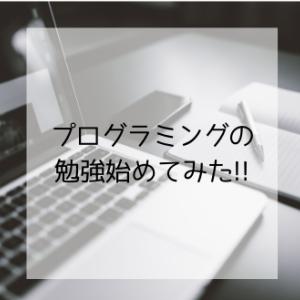プログラミングの勉強始めてみた!!