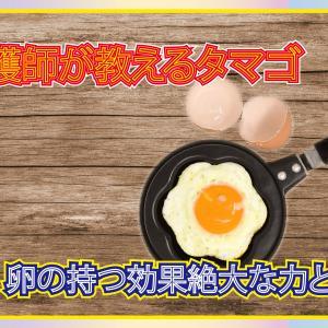 看護師が教える卵〜たまごの持つ効果絶大な力とは〜