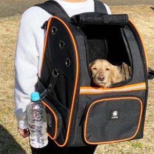 犬 避難 リュック