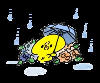 9月18日(金)🍳人は仕事をするために生きているのではない