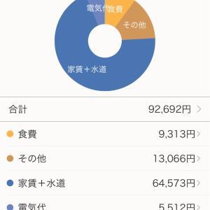 2020年11月度 家計簿公開【一人暮らし30代女】