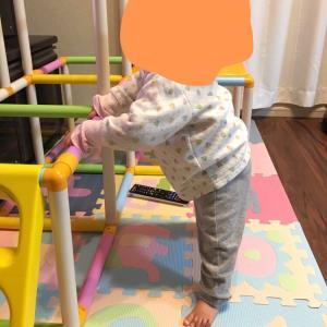 【つかまり立ちの練習方法】怖がりで歩き始めが遅かった娘