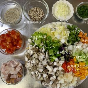 汁物シリーズ第8弾 野菜祭りだ!だいたい20品目スープ