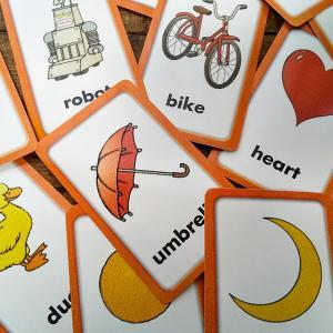 【イルカの英単語】英単語学習に役立つアプリ紹介します