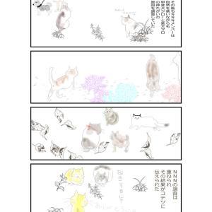 nnn調査③