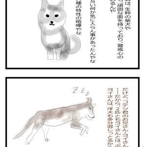 nnn調査結果④