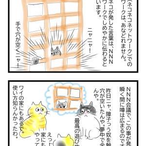 ネコの習性  ネコが障子を破るのは何故?