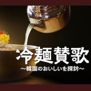 冷麺の良さがイマイチわからない私の冷麺道の師匠【冷麺賛歌】を観て学びの精神を!3食目冷麺に挑戦!